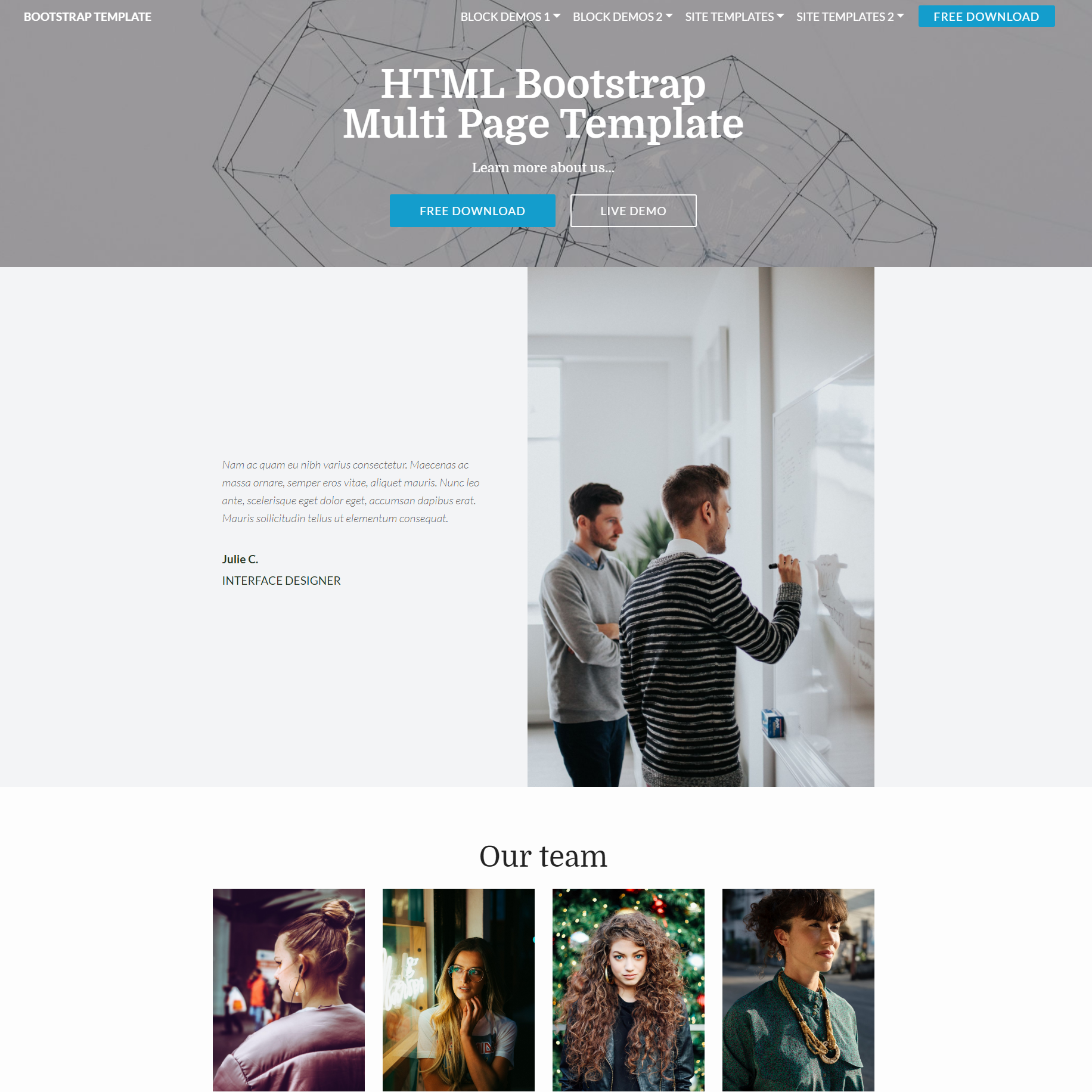 Responsive Bootstrap Multi page Themes