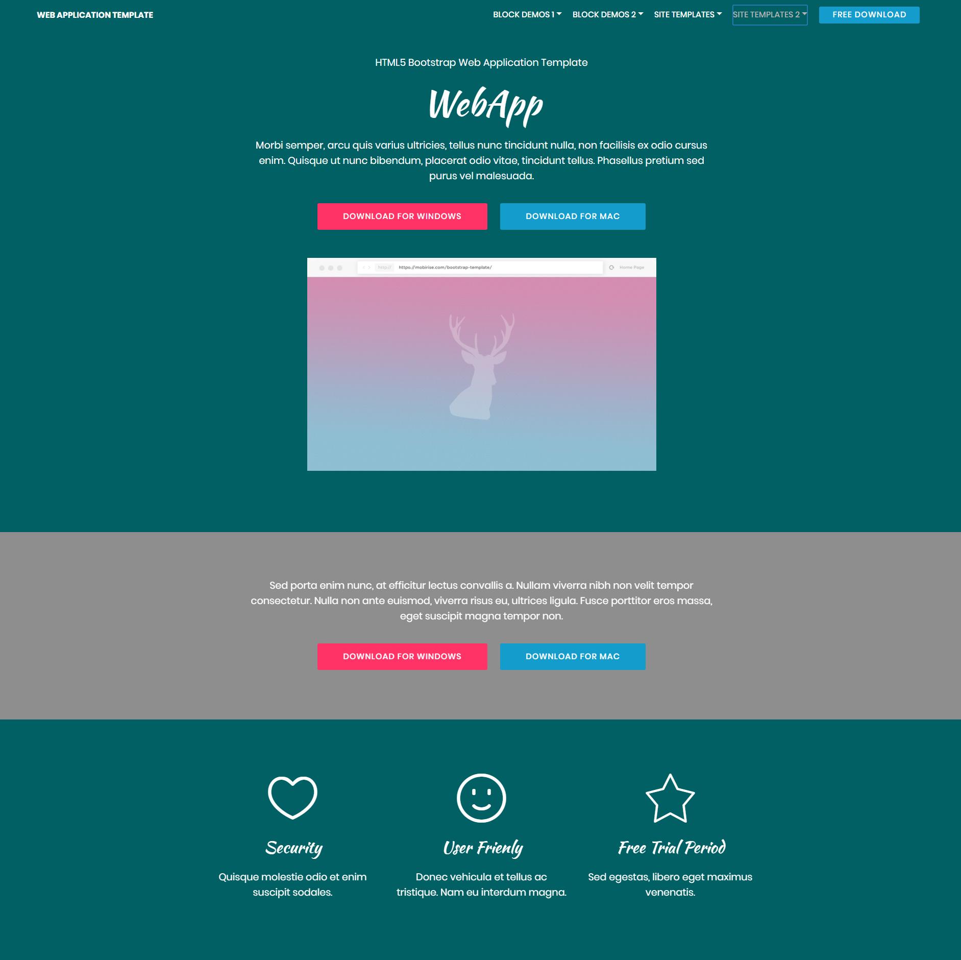 Responsive Bootstrap Web application Templates